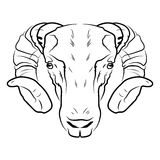 Ram head logo or icon in white for a mascot and T-shirt graphic. Royalty Free Stock Image