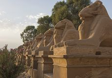 Ram headed avenue of sphinxes at Karnak Temple stock images