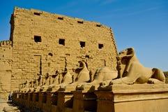 Ram-headed sphinxes-Egypt Temple of Karnak Royalty Free Stock Photos