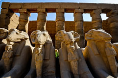 Ram-headed sphinxes-Egypt Temple of Karnak Stock Photos