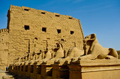 Ram-headed sphinxes-Egypt Temple of Karnak Royalty Free Stock Images