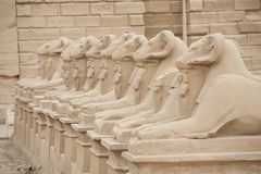 Ram headed sphinxes at Karnak Temple Royalty Free Stock Photography