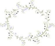 Ram i formen av en ellips av bär och Royaltyfri Foto
