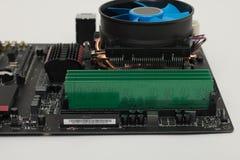 RAM installato sulla scheda madre Immagini Stock Libere da Diritti