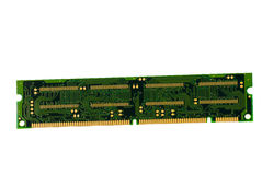 Ram Isolated Stock Image