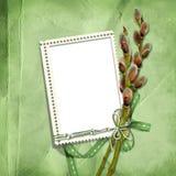 ram kici wiosna znaczka wierzba Zdjęcie Stock