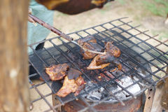 Ram meat being roasted on a barbecue spit. Roasted ram slow roasting on a barbecue spit Stock Image