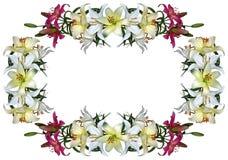 Ram med liljor Royaltyfri Fotografi