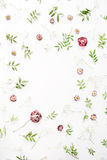 Ram med rosa rosor, filialer, sidor och kronblad Fotografering för Bildbyråer