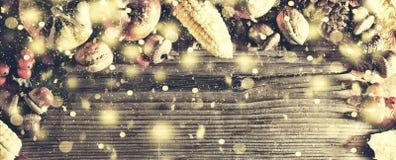 Ram med säsongsbetonade ingredienser i tacksägelsedag den blåa julen inramniner magi Royaltyfri Bild