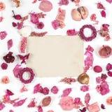 Ram med torkat gammalt papper för blommor som isoleras på vit backgroun Royaltyfri Fotografi