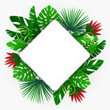Ram med tropiska växter stock illustrationer
