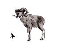 Ram oriental ink painting, sumi-e Royalty Free Stock Photography