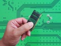 RAM (Random access memory) computer in hand on printed green com Stock Photos