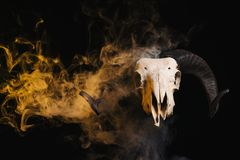 Ram skull with horns and yellow smoke Stock Photos