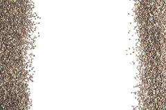 Ram som göras av chiafrö på vit bakgrund, bästa sikt arkivfoto