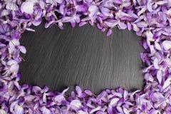 Ram som göras av violetta wisteriablommor Royaltyfri Foto