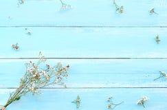 Ram som göras av vita lösa blommor på blå träbakgrund royaltyfri fotografi