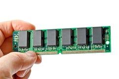 RAM verde Immagine Stock Libera da Diritti