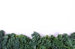 Rama świeża zielona sałatka opuszcza na białym tle Fotografia Royalty Free