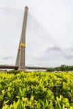 Rama8 мост, Таиланд Стоковое Фото