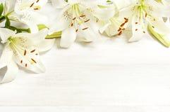 Rama białe leluje na białego drewnianego tła odgórnym widoku Kwitnie leluja pięknego bukieta białych kwiaty obrazy royalty free