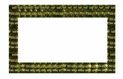 Rama bielu i zieleni faborki zdjęcia royalty free