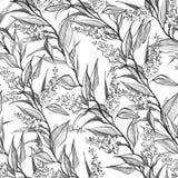 Rama botánica inconsútil con el modelo del flor ilustración del vector