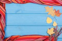 Rama chusta dla kobiety i liści na błękitnych deskach, odziewający dla jesieni lub zimy Fotografia Stock