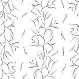Rama con las pequeñas hojas o pintura del follaje, mano floral dibujada - modelo inconsútil en el fondo blanco imagen de archivo libre de regalías
