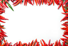 Rama czerwony pieprz Obraz Stock
