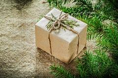 Rama de árbol de abeto del thuya de la caja de regalo en fondo de despido Fotografía de archivo libre de regalías