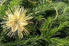 Rama de árbol con la decoración Tarjetas de la Navidad o del Año Nuevo Foto de archivo libre de regalías