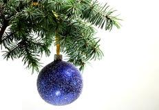 Rama de árbol de abeto aislada con la bola del azul de la Navidad Imagen de archivo