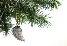 Rama de árbol de abeto aislada en blanco con el cono del pino del abeto Foto de archivo libre de regalías
