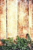 Rama de árbol de abeto de la Navidad sobre la pared de madera. Tarjeta de Navidad del vintage Fotografía de archivo
