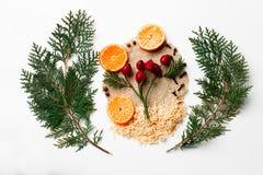 Rama de árbol de navidad, bayas del acebo, decoración del Año Nuevo del mandarín en blanco Concepto creativo, espacio para el tex Foto de archivo libre de regalías