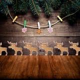 Rama de árbol de navidad, galletas hechas en casa del pan de jengibre con a de congelación Foto de archivo