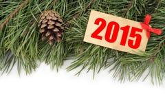 Rama de árbol de navidad, topetones y placa de madera con el texto 2015 Imagen de archivo libre de regalías