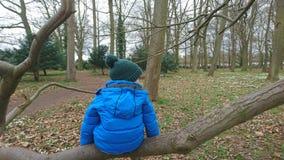 Rama de árbol del muchacho que se sienta que mira hacia fuera Imagen de archivo