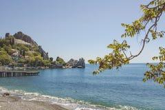 Rama de árbol en el fondo del paisaje del mar con los acantilados y las casas costeros imágenes de archivo libres de regalías