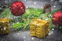 Rama de árbol de navidad con un juguete en un fondo gris Imagenes de archivo