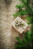 Rama de árbol de pino del thuya de la caja de regalo en fondo de despido Imágenes de archivo libres de regalías