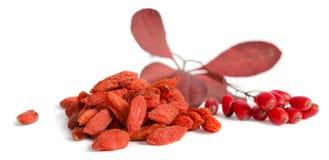 Rama de bérberos rojos maduros y de bayas secadas del goji Fotos de archivo libres de regalías