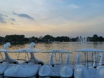 Rama9 de boot van de Parkpool royalty-vrije stock foto