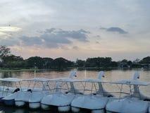 Rama9 de boot van de Parkpool royalty-vrije stock afbeeldingen