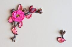 Rama de flores secas en fondo gris Imagen de archivo
