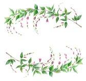 Rama de la acuarela, marco floral Imagenes de archivo