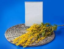 Rama de la mimosa al lado de un cuaderno de la página en blanco Fotografía de archivo