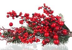 Rama de la Navidad con las frutas rojas Fotografía de archivo